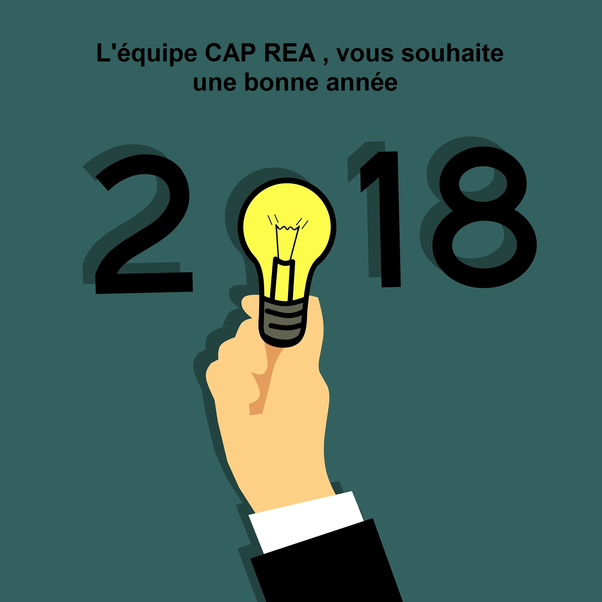 La sarl CAP REA, vous remercie de votre confiance et vous présente ses meilleurs vœux pour l'année 2018.